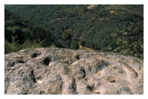 Ruta de los petroglifos de Santa Marina - Pteroglifos - vista general