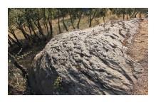 Ruta de los petroglifos de Santa Marina - Petroglifos - vista 1